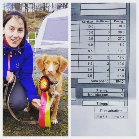 Isis 1st prize Obedience Class 1